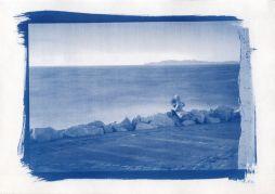cyanotype-4