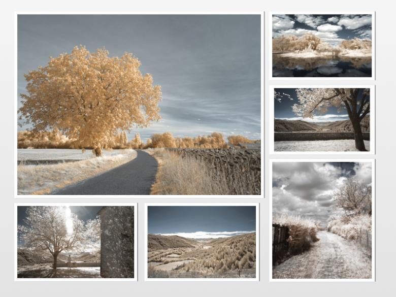 photo-montage4